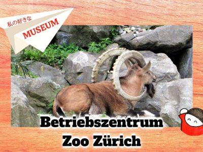 私の好きな世界のMuseum:13 チューリッヒ動物園