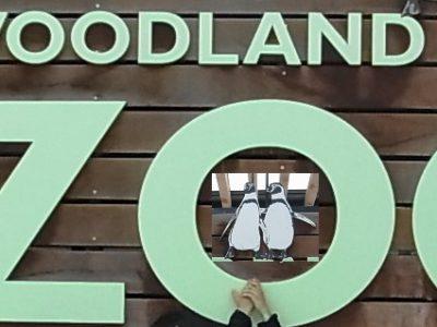 私の好きな世界のMuseum:12ウッドランドパーク動物園(シアトル)