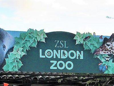 私の好きな世界のMuseum:14 ロンドン動物園